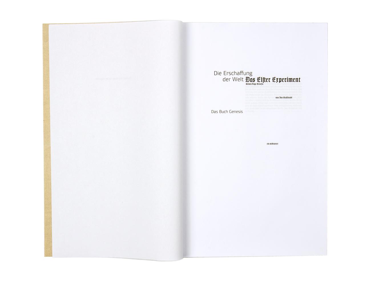 Das Elster Experiment E-book Buchgestaltung editorial design Typographie