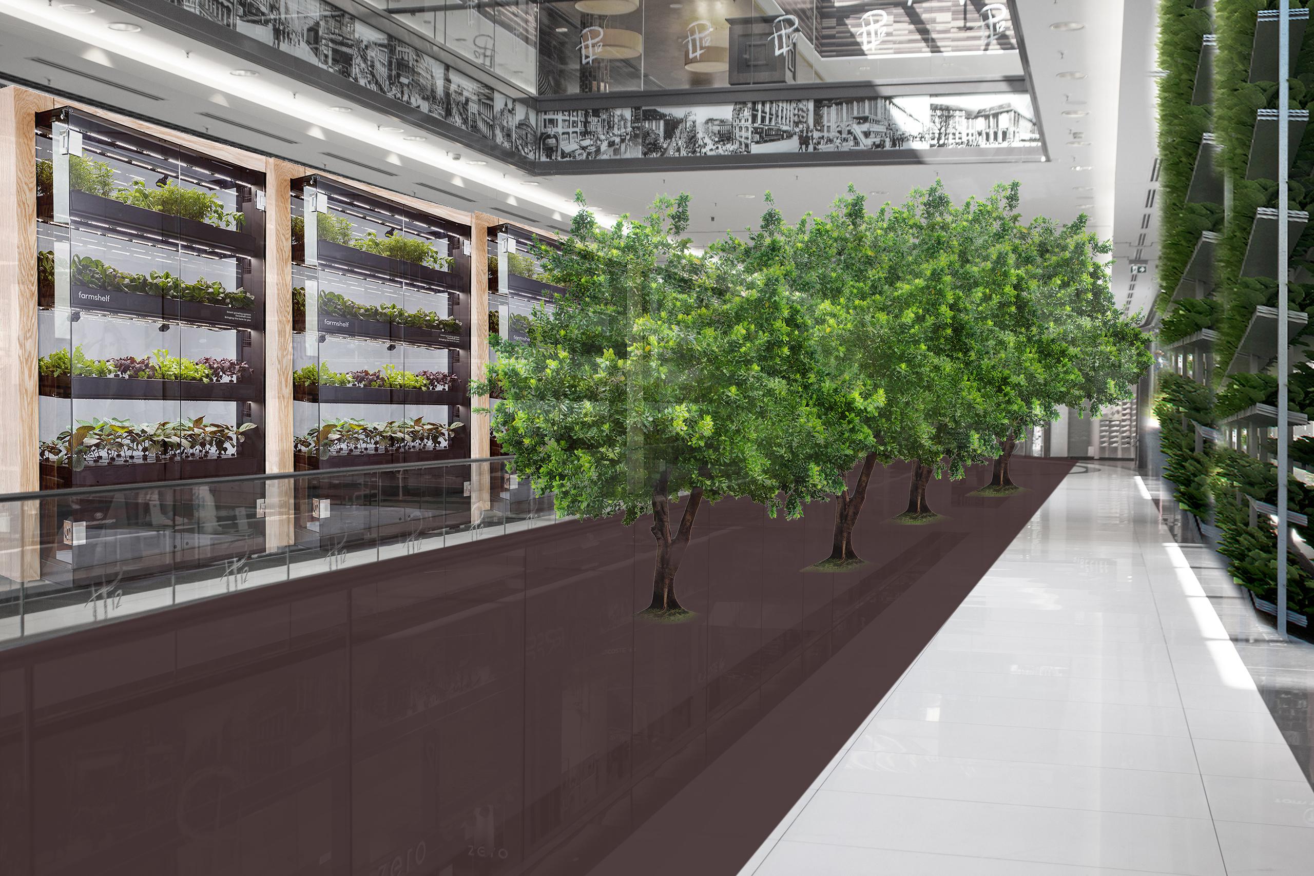 Phaneomen Shoppingcenter Raumgestaltung Conceptdesign Inszenierung Reuse Kapitalismus Museum Shopdesign vertical gardening