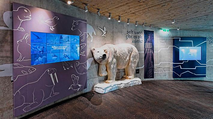 Polardom Schönbrunn Museum Ausstellungsgrafik Foto Jungel Schmid